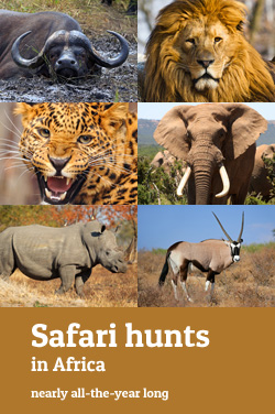 Safari hunts in Africa